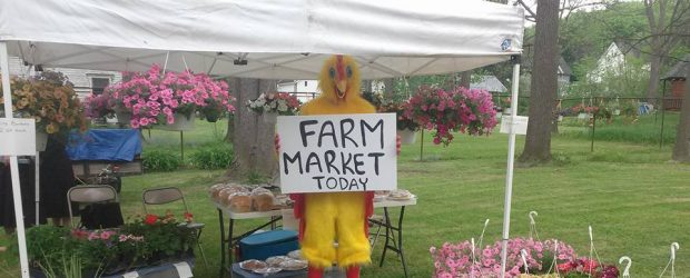 Farmer's Market is closed for the season, come see us in 2017!